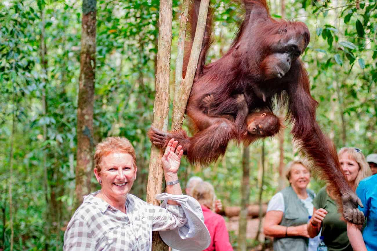 Laura In Borneo Jungle With Orangutan