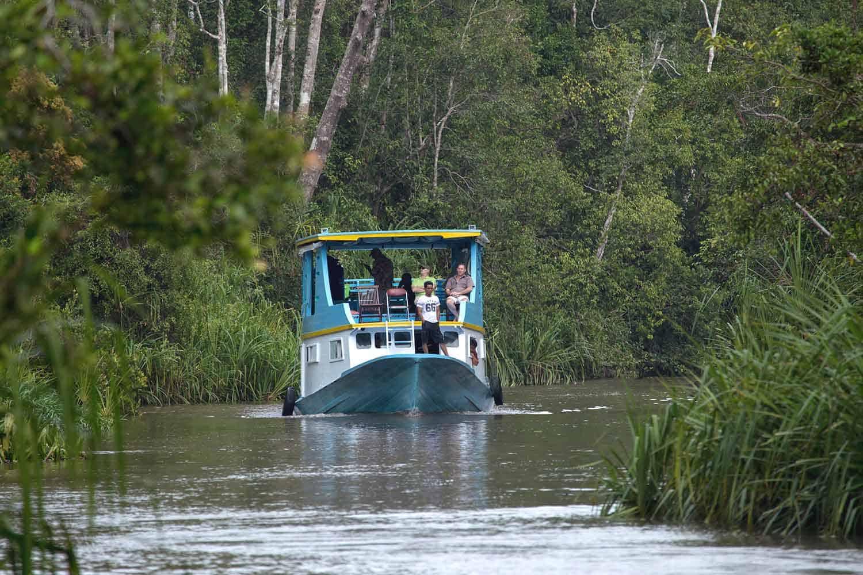 Klotok jungle tour Borneo - Technology Free Trekking Tour